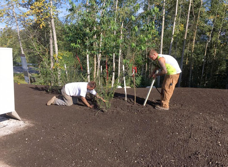 Landscaping Your Property