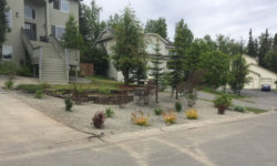 LANDSCAPING8