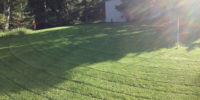 lawncare1