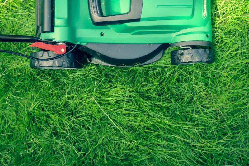 Lawn Care Company in Anchorage